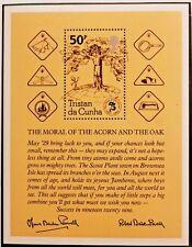 75th anniversary of Boy Scout movement stamp sheet Tristan da Cunha SG ref: 334