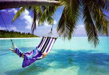 Tropical Beach Poster Print, 36x24