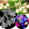 20 LED Fairy String Star Light Wedding Snowflake Lamp Xmas Party Home Decor-WI