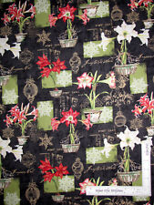 Christmas In Bloom Amaryllis Flower Black Cotton Fabric Wilmington By The Yard