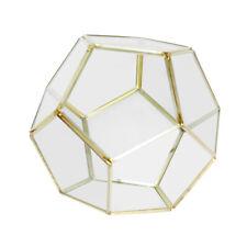 Irregular Glass Geometric Succulent Planter Vase Terrarium Container #11