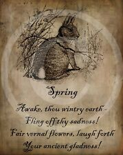 Primitive Spring Poem Bunny Rabbit Hare Easter Picture Print 8x10