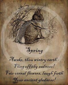 Primitive Spring Poem Bunny Rabbit Hare Easter Picture Print 8x10