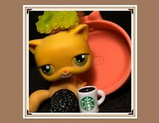 Lps Littlest Pet Shop #78 Orange Real Hair Sitting Shorthair Cat Starbucks (B)
