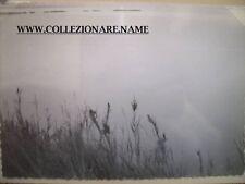 FOTOGRAFIA ALLUVIONE POLESINE PHOTO FLOOD ITALY POLESINE 1951 (G3)(22)
