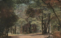 Lovers' Walk, Dudley Castle, 1923, posted