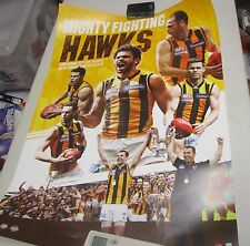 Cyril Rioli (Hawthorn FC) signed AFL official poster - 400mm x 600mm approx.