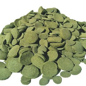 Mixed Size Wafers of Spirulina, Algae, Snails, Shrimp, Plecos, Catfish & More