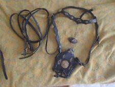 Baroque Bridle Portuguese bridle spanish bridle