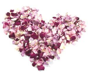 Freeze-dried rose Petals. Mix colors 50 cups.