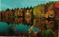 Vintage Postcard - Beautiful Sunny Day On The Water Fall Foliage Unposted #2589