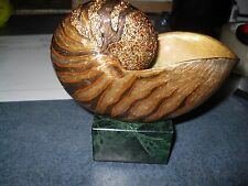 "Jay Strongwater ""Nautilus object kay RETAILS 1175.00 NIB"