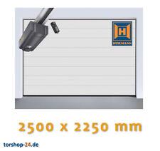 B-ware Hörmann Sektionaltor LPU 42 2500 X 2250 Mm Garagentor Garagen Tor