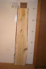 "2"" Poplar Live Edge Wood Slab, wood craft & hobby lumber, PL-350"