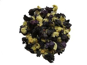 Black - Purple Hollyhock Mallow Dried Flowers  25g-200g - Althaea Rosea