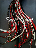 """Super Long 11""""- 14"""" Feather Extension For Hair,  Whiting Eurohackle, DIY Kit"""