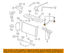 GM OEM Radiator-Lower Hose Clamp 11570393