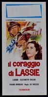 Plakat Die Mut Von Lassie Taylor Morgan M.Wilcox Hund L08