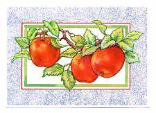 Apples on Branch Postcard Fruit Leaves Blue Frame Unposted