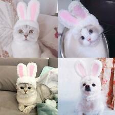 Cat Bunny Rabbit Ears Hat Cap Pet Cosplay Costumes for Cat Small Dogs Party Deco