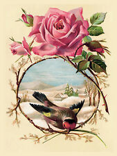 "Flower Bird, Retro metal Sign/Plaque, Gift 10"" x 8"" Large"