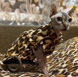 "winter Sphynx cat clothing, cat jumper, Condition is ""New"" handmade.Polar fleece"