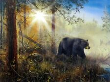 "Shadow in the Mist Bear Art Print By Jim Hansel  Image Size 16"" x 12"""