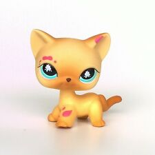 Littlest Pet Shop short hair cat LPS toys kitty EUROPEAN #816
