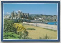 Castell a Thref Conwy Castle and Town 1987 Postcard (P339)