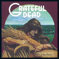 GRATEFUL DEAD Wake of the Flood BANNER HUGE 4X4 Ft Fabric Poster Tapestry Flag