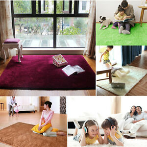 Fluffy Rugs Anti-Skid Shaggy Area Rug Floor Mat 80X120CM Home Dining Room Carpet