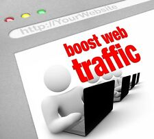 100,000  unique views for your website real human boost web traffic + Live stats