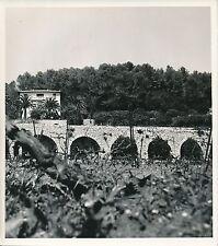 STJEANNET c.1935 - Maison Vignes   Mur de Pierres   Alpes-Maritimes - Div 7545