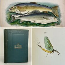 1868 Fly Fishers Entomology By Alfred Ronalds Fly Fishing Angling