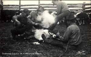 Cowboy Branding Cattle Western Ranch SANBORN Real Photo Postcard