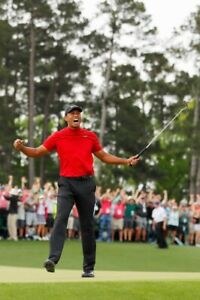 GOLF MASTERS CHAMPION TIGER WOODS POSTER 24x36 new free shipping