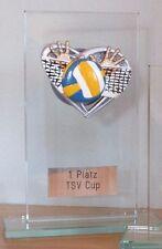 Volleyball-Pokal (Glas) mit Wunschgravur (H)