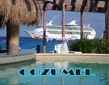 Mexico - COZUMEL - CRUISE SHIP - Travel Souvenir Magnet