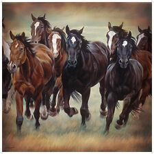 """Western Equestrian Bathroom Decor Horse Shower Curtain 70 3/4"""" X 70 3/4"""""""
