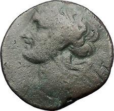 CARTHAGE ZEUGITANA 201BC Tanit Horse LARGE 3 Shekels Ancient Greek Coin i56306