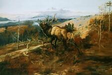 The Elk by Charles Russell Wildlife Animal Mountain Landscape 36x24 Canvas Print