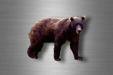 Aufkleber sticker bear bär wandtattoo eisbär biker braunbär macbook tiere