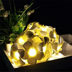 Outdoor Indoor LED Flower Shape Light String Festival Decoration Lantern Z