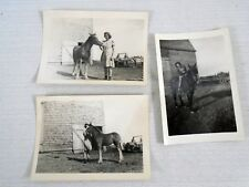 LOT Vintage B&W Photo of Irene and her Colt Horse Barnyard Farm Annapolis Valley