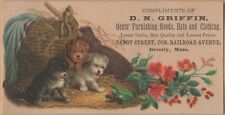 Victorian Trade Card-D N Griffin Clothing-Beverly, MA-Puppies-Broom-Basket