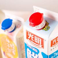 2 x Flaschenverschluss Milchausgießer Stopper