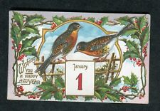 c1910 Illustrated/ Embossed New Year Card: Birds & Holly