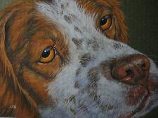 Brittany Spaniel dog animal pet print