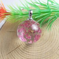 5 pcs/Lot DIY Real Dried Flowers Clear Glass Ball Charms Necklace Pendant