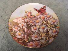 The Michaelmas Daisy Fairy Collectors Plate Festival Flower Fairies Barker